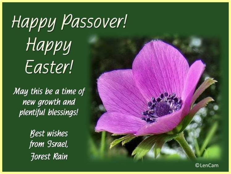 happy passover! happy easter! – inspiration from zion: this is a